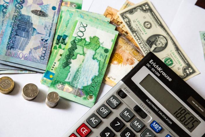 Мемлекет қандай жағдайда кредитті төлеп береді?