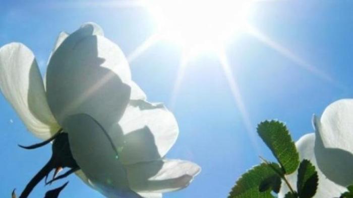 Демалыс күндері еліміздің басым бөлігінде күн салқындайды