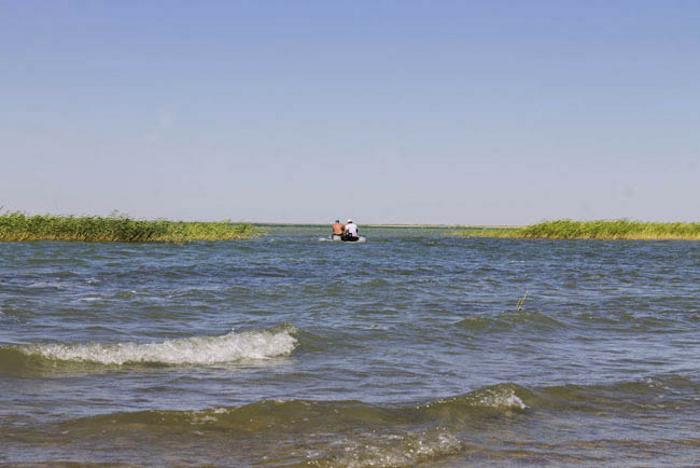 Қызылордадағы өзен-көлдерден 8 мың метр ау тазартылды
