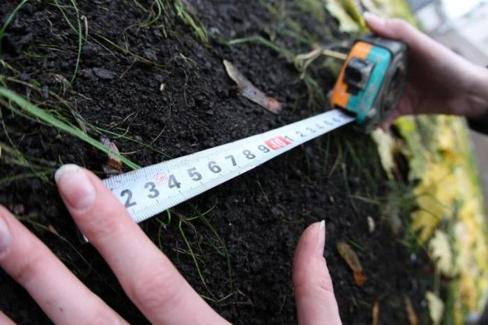 Жер үлестіруде жемқорлық жиі тіркелген өңірлер белгілі болды