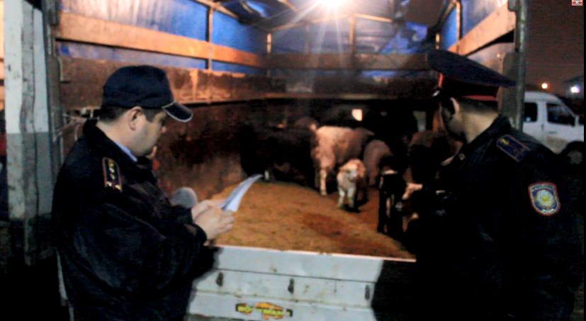 Қызылорда базарларында сатылып жатқан ет өнімдері жаппай тексеріліп жатыр